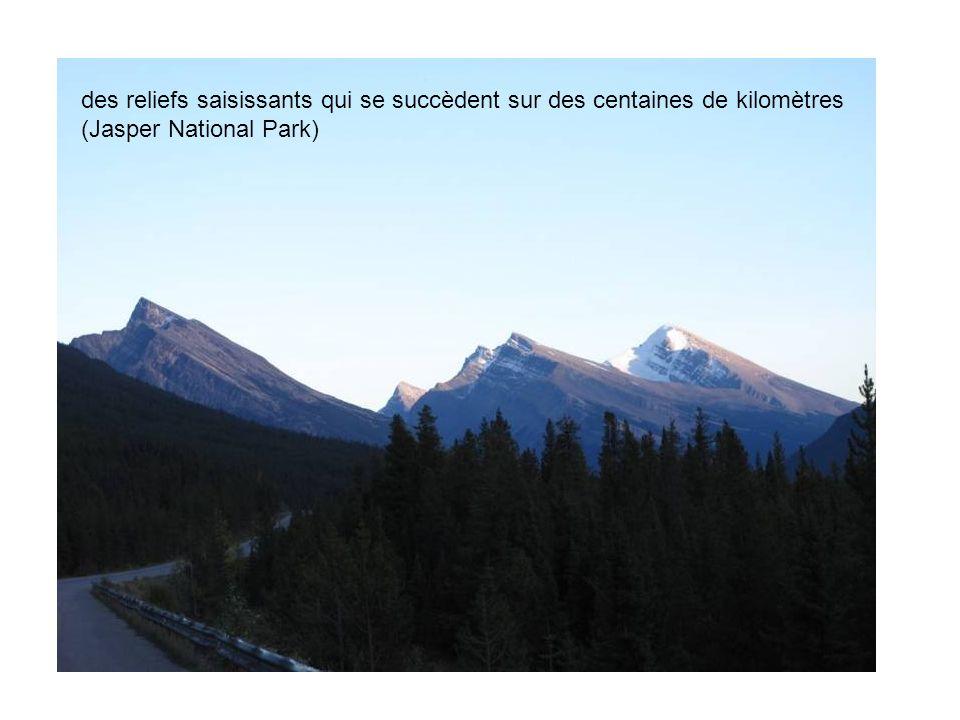 des reliefs saisissants qui se succèdent sur des centaines de kilomètres (Jasper National Park)