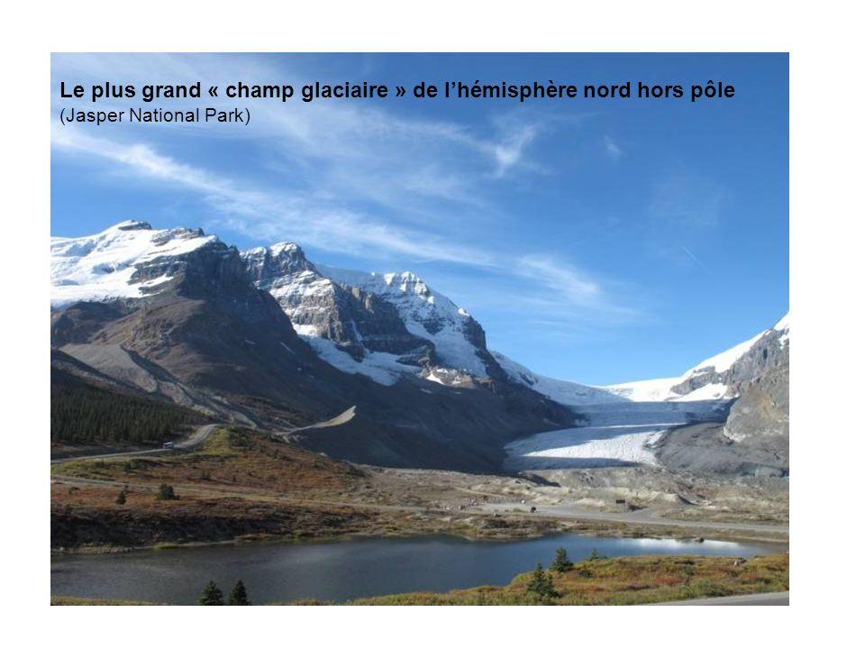 Le plus grand « champ glaciaire » de lhémisphère nord hors pôle (Jasper National Park)