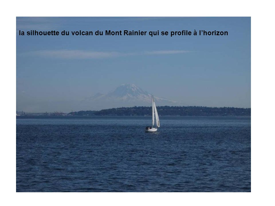 la silhouette du volcan du Mont Rainier qui se profile à lhorizon