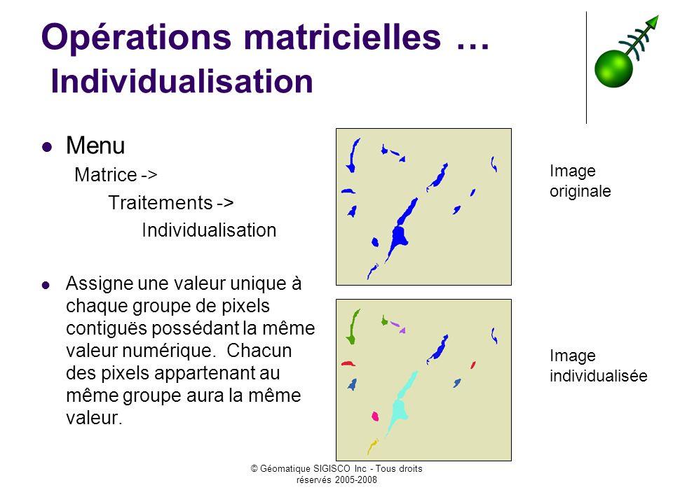 © Géomatique SIGISCO Inc - Tous droits réservés 2005-2008 Opérations matricielles … Individualisation Menu Matrice -> Traitements -> Individualisation Assigne une valeur unique à chaque groupe de pixels contiguës possédant la même valeur numérique.