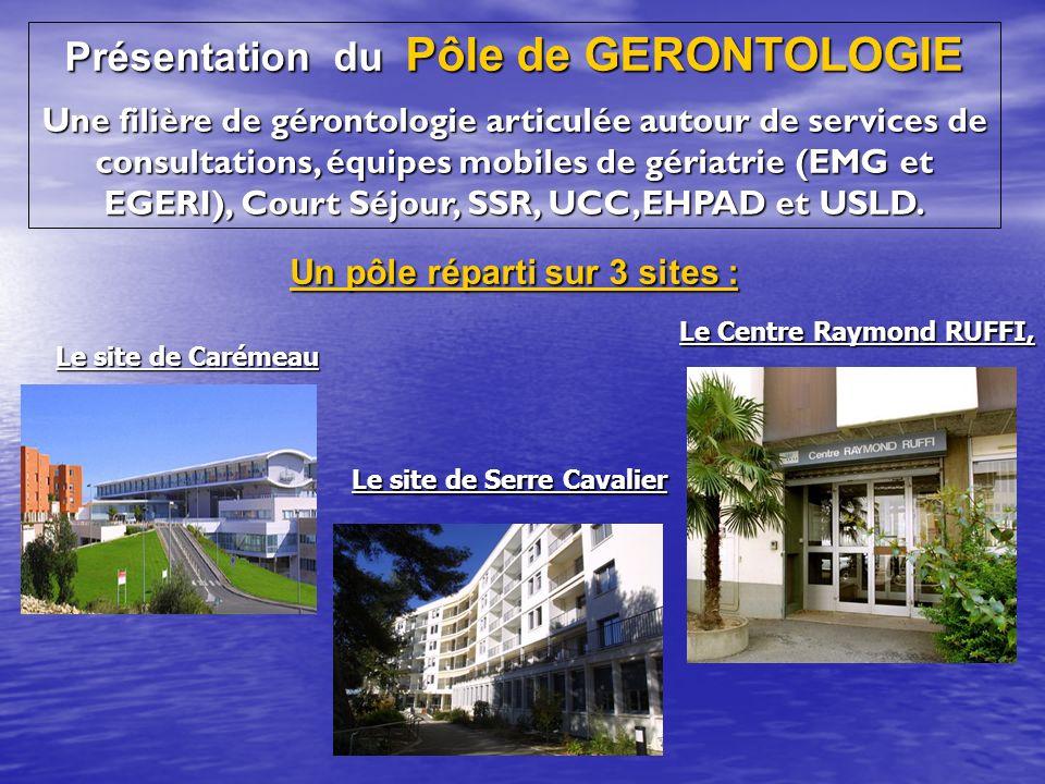 Présentation du Pôle de GERONTOLOGIE Une filière de gérontologie articulée autour de services de consultations, équipes mobiles de gériatrie (EMG et E