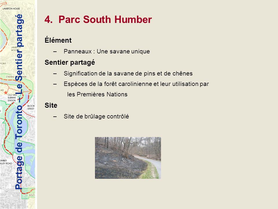 Portage de Toronto – Le Sentier partagé 4. Parc South Humber Élément –Panneaux : Une savane unique Sentier partagé –Signification de la savane de pins