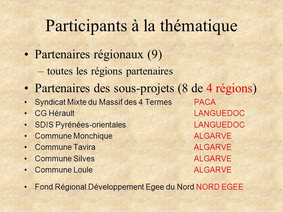 Participants à la thématique Partenaires régionaux (9) –toutes les régions partenaires Partenaires des sous-projets (8 de 4 régions) Syndicat Mixte du