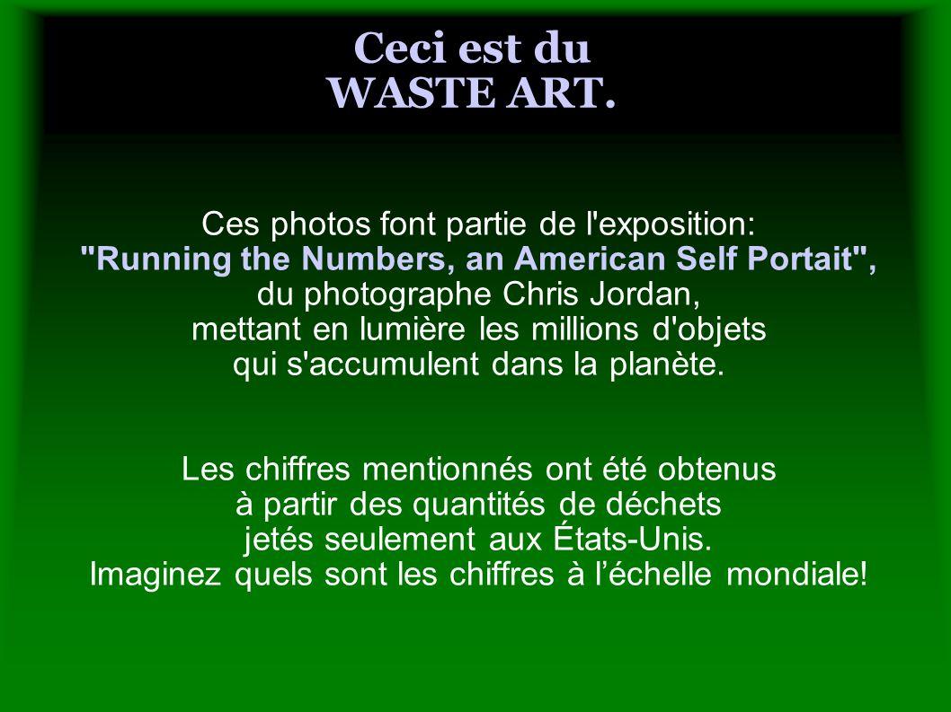 Ceci est du WASTE ART. Ces photos font partie de l'exposition: