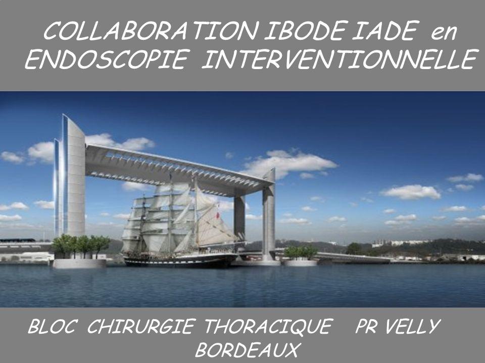 12 LES EXIGENCES Le matériel danesthésie Raccord ventilation Sondes dintubation Sonde type Carlens Pince nez
