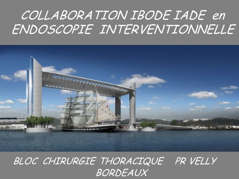 1 I COLLABORATION IBODE IADE en ENDOSCOPIE INTERVENTIONNELLE BLOC CHIRURGIE THORACIQUE PR VELLY BORDEAUX