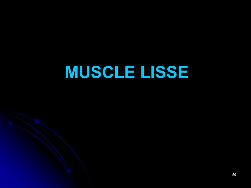 50 MUSCLE LISSE