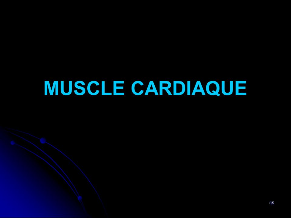 58 MUSCLE CARDIAQUE
