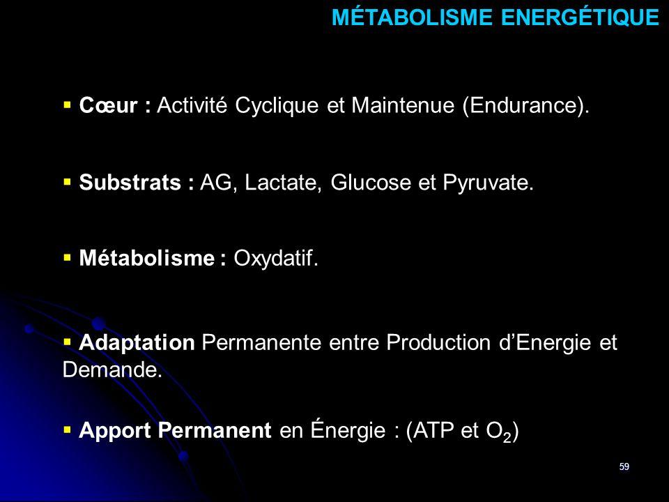 59 Cœur : Activité Cyclique et Maintenue (Endurance). MÉTABOLISME ENERGÉTIQUE Substrats : AG, Lactate, Glucose et Pyruvate. Métabolisme : Oxydatif. Ap