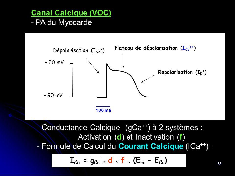 62 - Conductance Calcique (gCa ++ ) à 2 systèmes : Activation (d) et Inactivation (f) - Formule de Calcul du Courant Calcique (ICa ++ ) : Canal Calciq