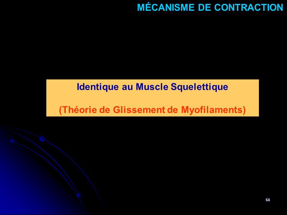 64 Identique au Muscle Squelettique (Théorie de Glissement de Myofilaments) MÉCANISME DE CONTRACTION