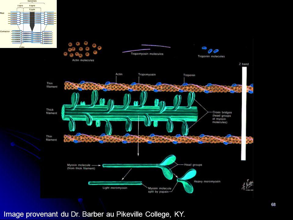 68 Image provenant du Dr. Barber au Pikeville College, KY.