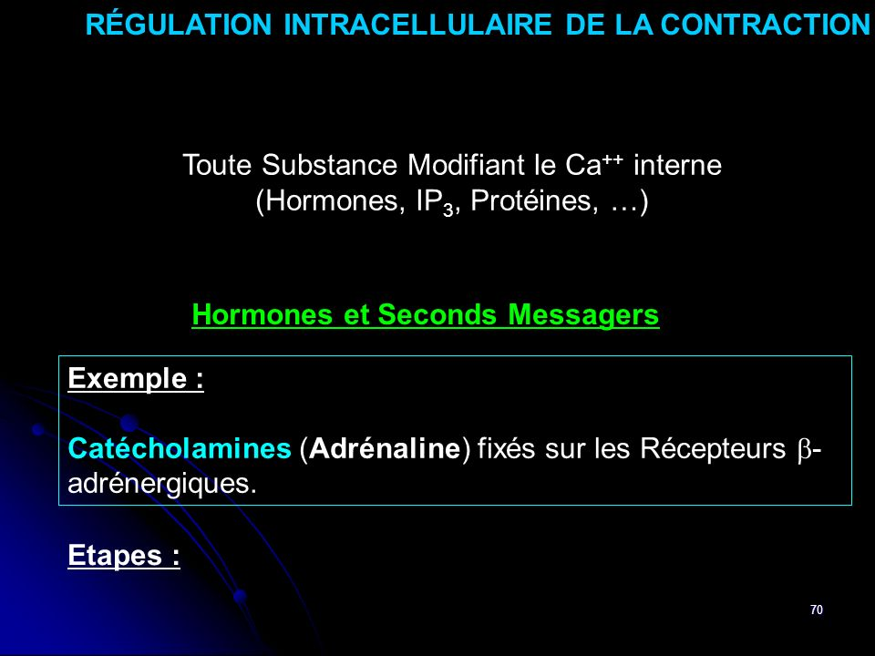 70 RÉGULATION INTRACELLULAIRE DE LA CONTRACTION Toute Substance Modifiant le Ca ++ interne (Hormones, IP 3, Protéines, …) Hormones et Seconds Messagers Exemple : Catécholamines (Adrénaline) fixés sur les Récepteurs - adrénergiques.