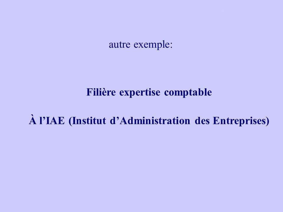 Filière expertise comptable À lIAE (Institut dAdministration des Entreprises) autre exemple: Après le Bac ES Choisir une voie