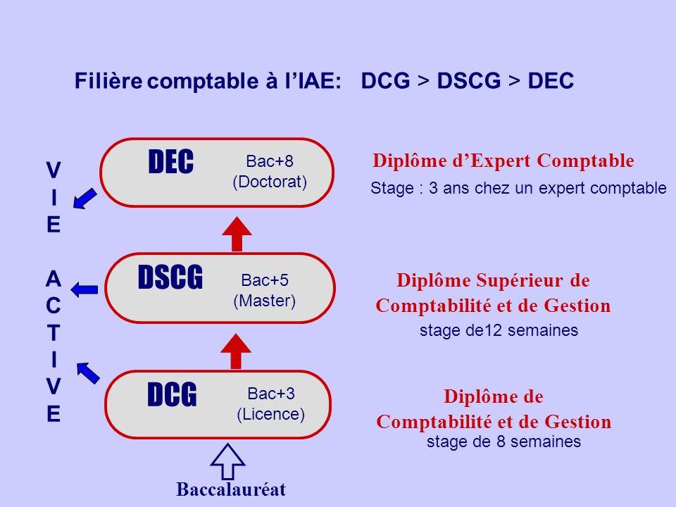 Filière comptable à lIAE: DCG > DSCG > DEC DSCG DEC Stage : 3 ans chez un expert comptable stage de12 semaines DCG Diplôme dExpert Comptable Diplôme S