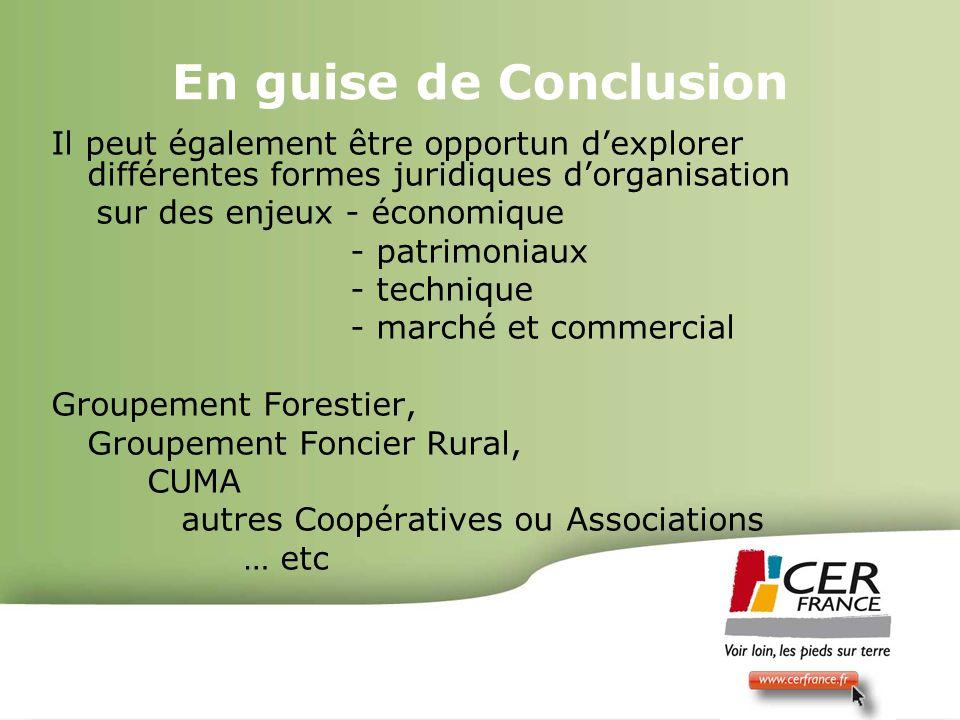 Bois Energie 17 decembre 200910 En guise de Conclusion Il peut également être opportun dexplorer différentes formes juridiques dorganisation sur des e