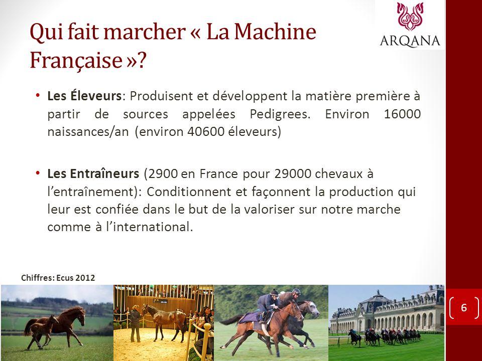 Qui fait marcher « La Machine Française »? Les Éleveurs: Produisent et développent la matière première à partir de sources appelées Pedigrees. Environ