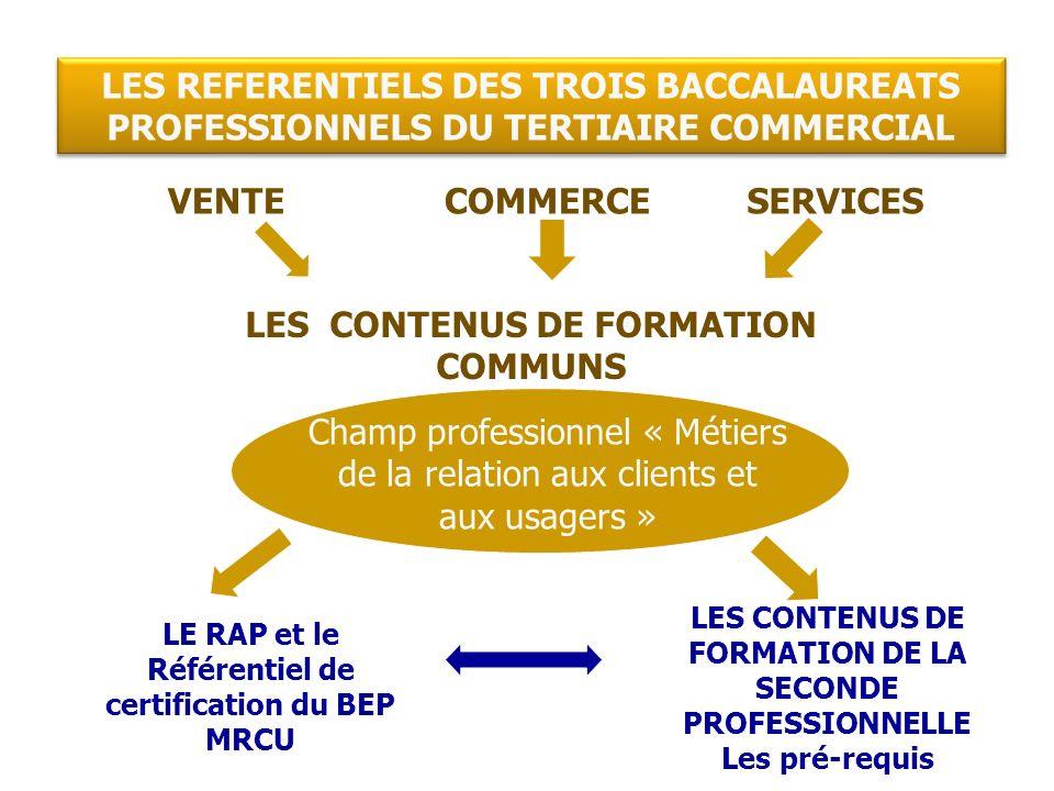 SecondePremièreTerminale Déc 2010Sept 2009 6 semaines en PFMP (2 x 3 sem.) CCF pour acquérir la certification 22 semaines en PFMP 6 sem.8 sem.