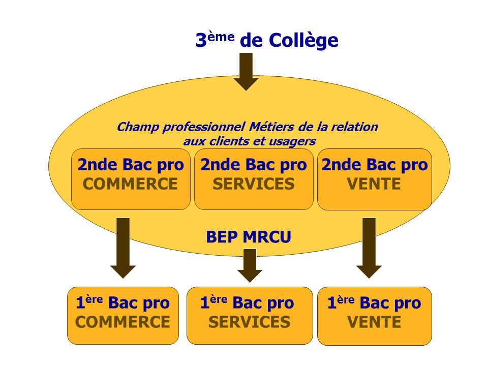 3 ème de Collège Champ professionnel Métiers de la relation aux clients et usagers BEP MRCU 1 ère Bac pro COMMERCE 1 ère Bac pro SERVICES 1 ère Bac pr