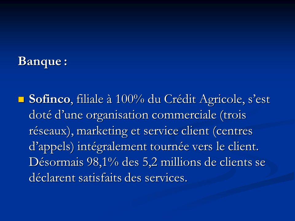 Banque : Sofinco, filiale à 100% du Crédit Agricole, sest doté dune organisation commerciale (trois réseaux), marketing et service client (centres dappels) intégralement tournée vers le client.