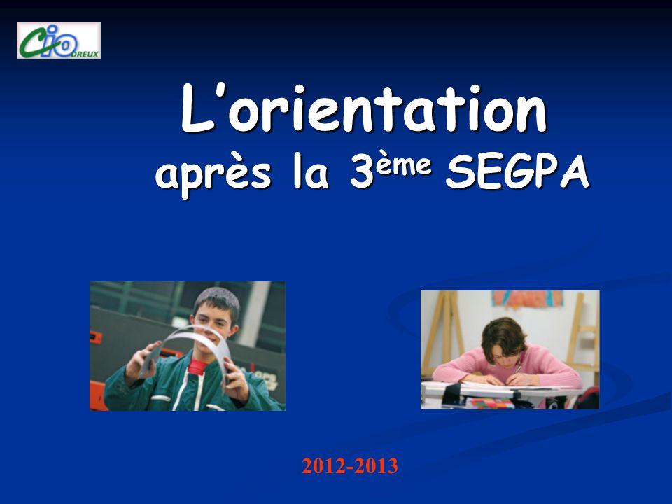 Lorientation après la 3 ème SEGPA 2012-2013