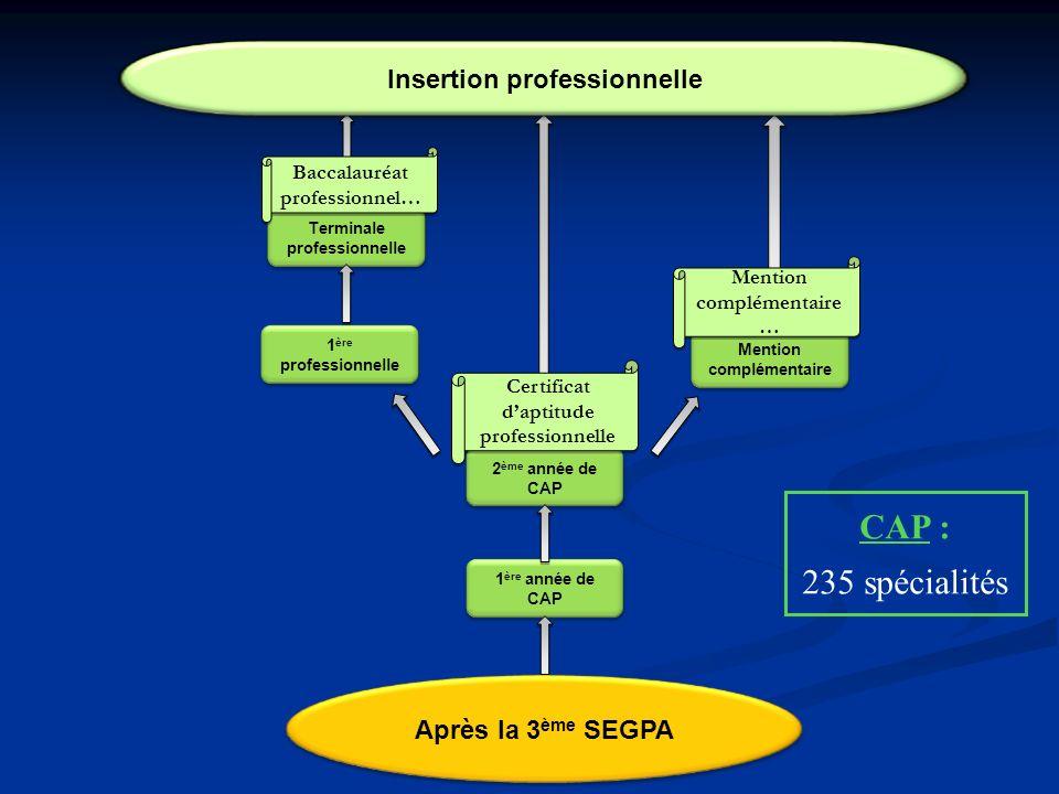 1 ère année de CAP 2 ème année de CAP Terminale professionnelle Baccalauréat professionnel… Certificat daptitude professionnelle Insertion professionn