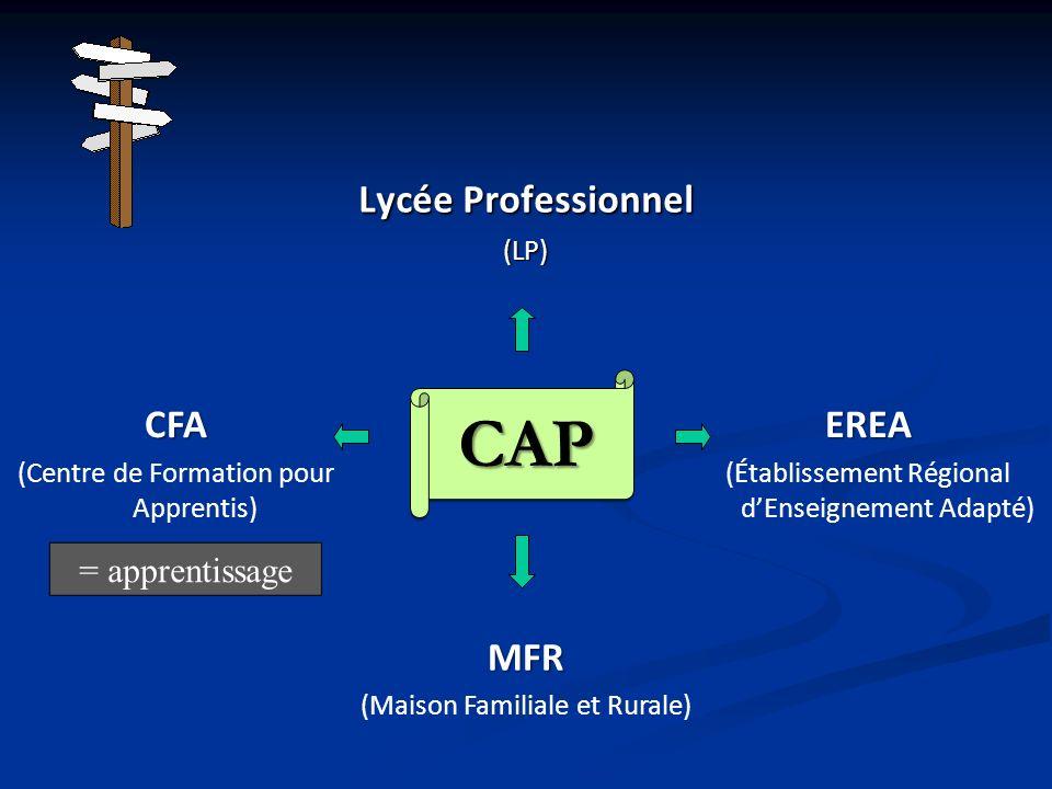 Lycée Professionnel (LP) MFR (Maison Familiale et Rurale) CFA (Centre de Formation pour Apprentis)EREA (Établissement Régional dEnseignement Adapté) =