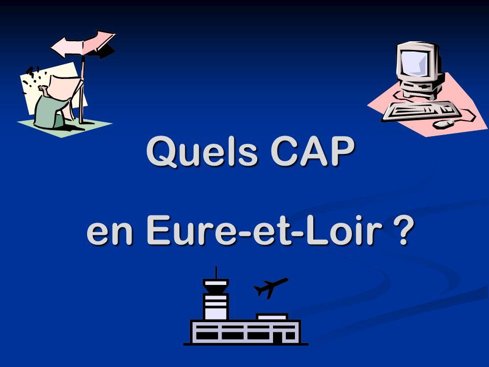 Quels CAP en Eure-et-Loir ?