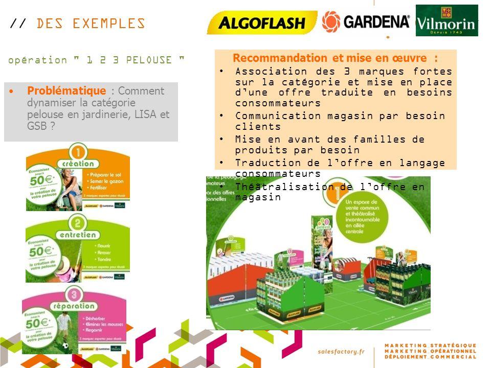 opération 1 2 3 PELOUSE Problématique : Comment dynamiser la catégorie pelouse en jardinerie, LISA et GSB .