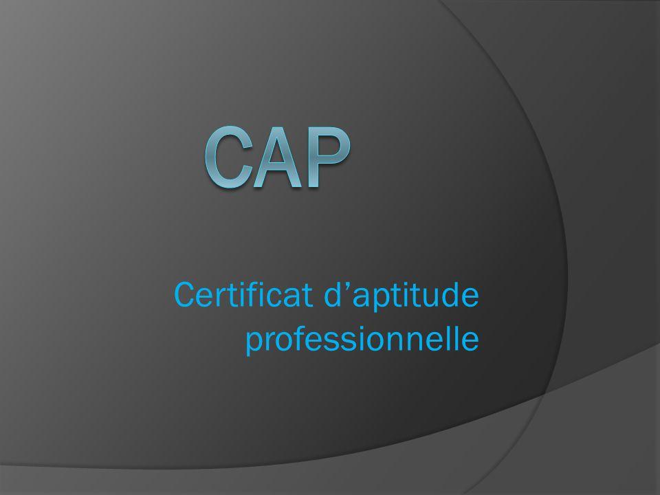 Certificat daptitude professionnelle