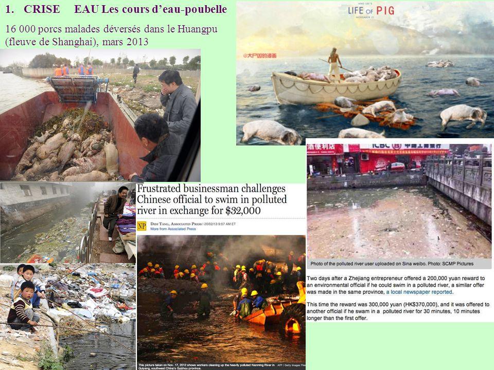 1.CRISE EAU Les cours deau-poubelle 16 000 porcs malades déversés dans le Huangpu (fleuve de Shanghai), mars 2013