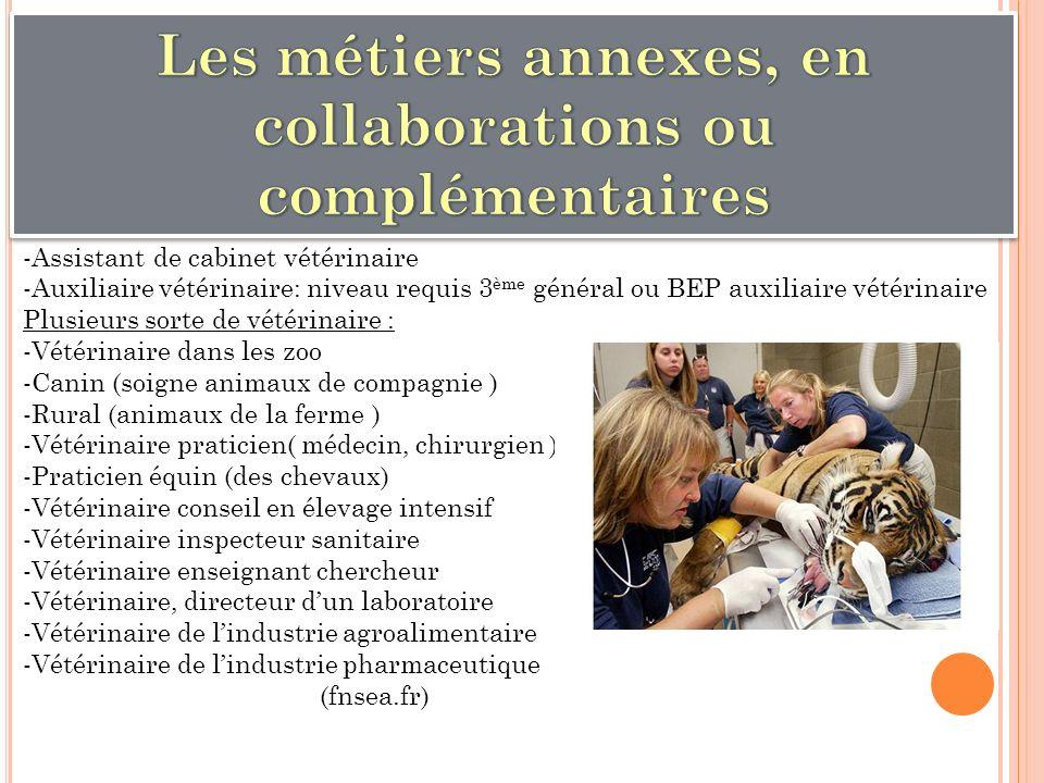 -Assistant de cabinet vétérinaire -Auxiliaire vétérinaire: niveau requis 3 ème général ou BEP auxiliaire vétérinaire Plusieurs sorte de vétérinaire :