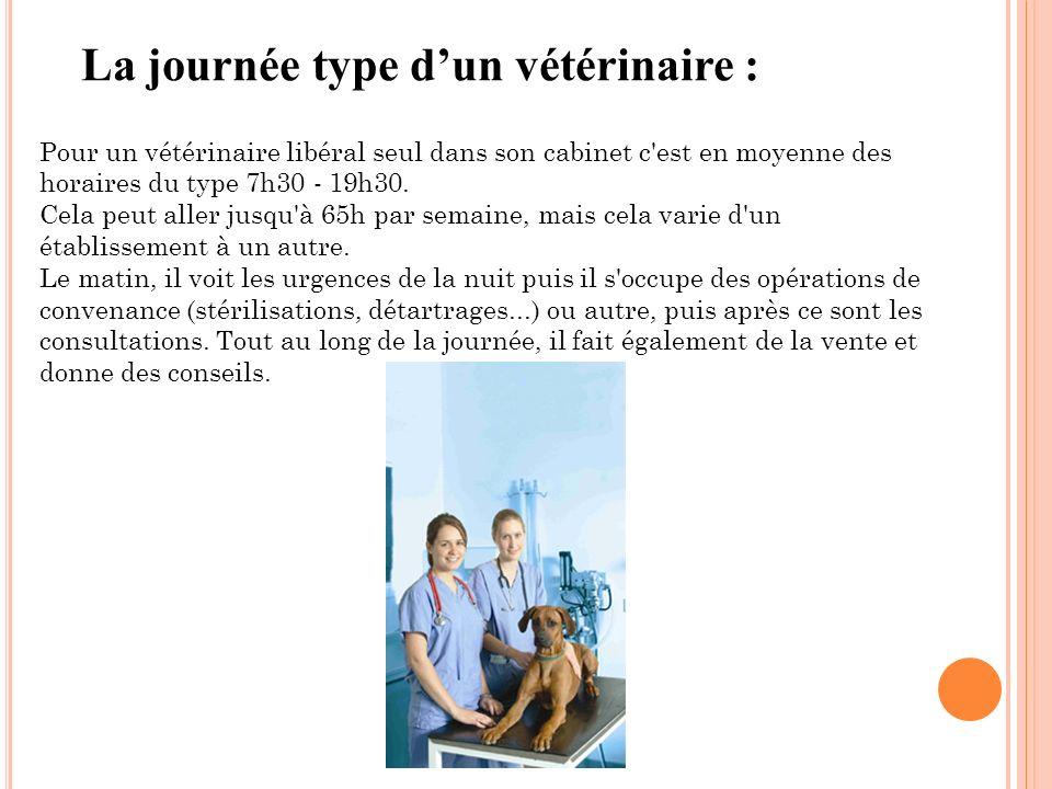 La journée type dun vétérinaire : Pour un vétérinaire libéral seul dans son cabinet c'est en moyenne des horaires du type 7h30 - 19h30. Cela peut alle