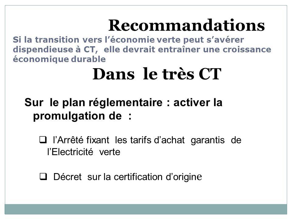 Recommandations Si la transition vers léconomie verte peut savérer dispendieuse à CT, elle devrait entraîner une croissance économique durable Dans le