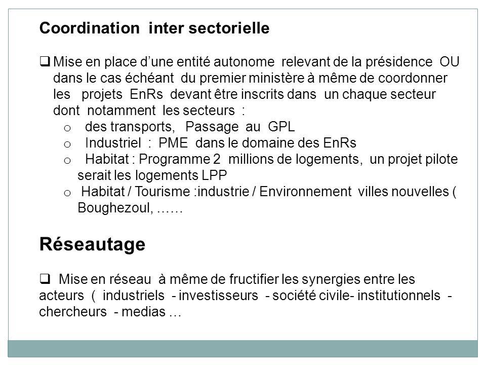 Coordination inter sectorielle Mise en place dune entité autonome relevant de la présidence OU dans le cas échéant du premier ministère à même de coor