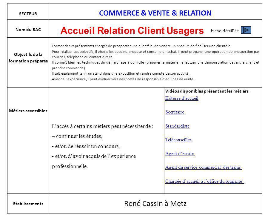 SECTEUR COMMERCE & VENTE & RELATION Nom du BAC Accueil Relation Client Usagers Objectifs de la formation préparée Former des représentants chargés de