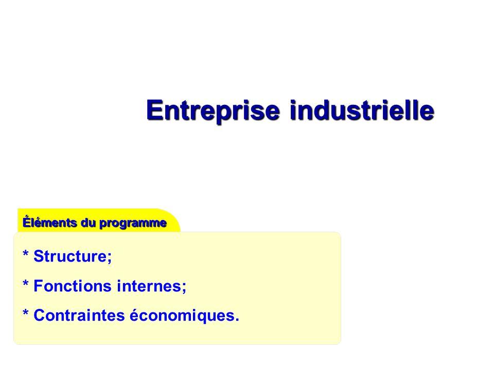 Entreprise industrielle Éléments du programme * Structure; * Fonctions internes; * Contraintes économiques.