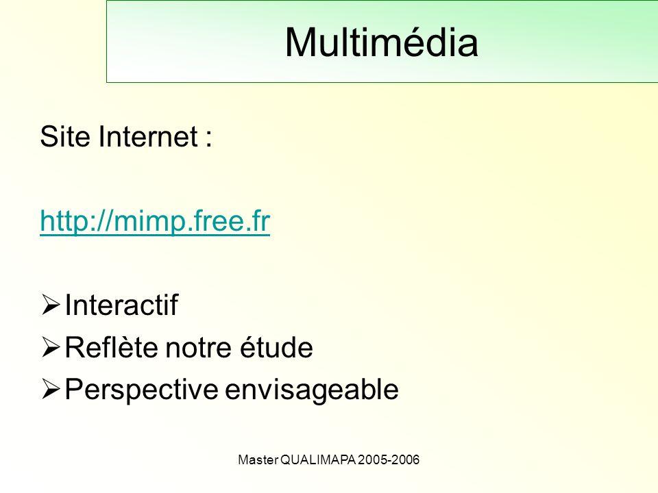 Master QUALIMAPA 2005-2006 Multimédia Site Internet : http://mimp.free.fr Interactif Reflète notre étude Perspective envisageable