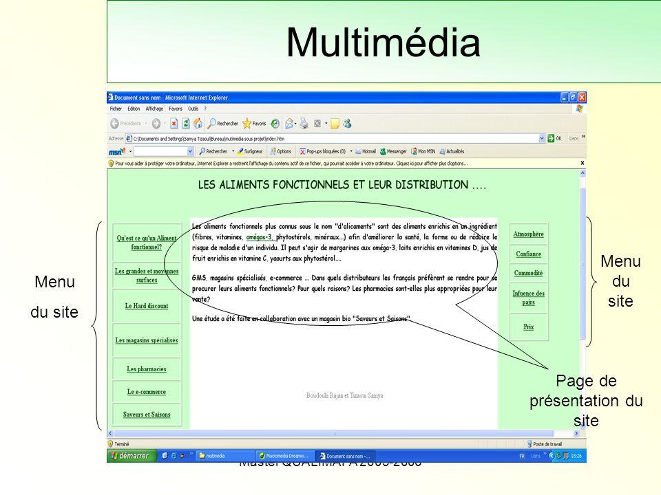 Master QUALIMAPA 2005-2006 Multimédia Menu du site Page de présentation du site Menu du site