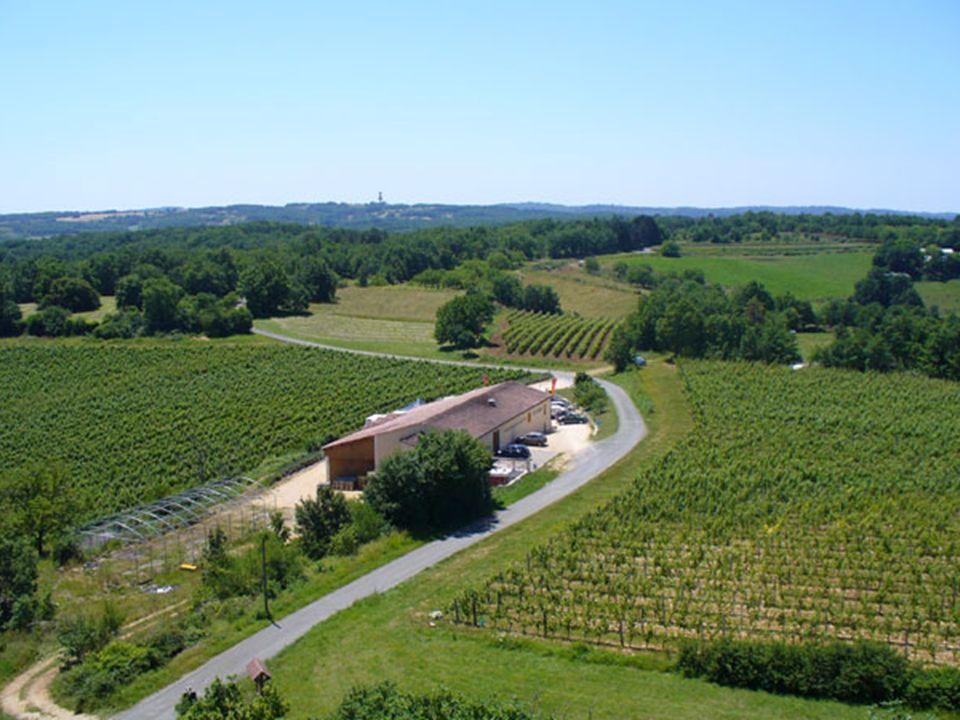 Revitalisation rurale Il ne restait plus quà reprendre les petites routes serpentines et étroites dévalant vers la vallée de la Dordogne.