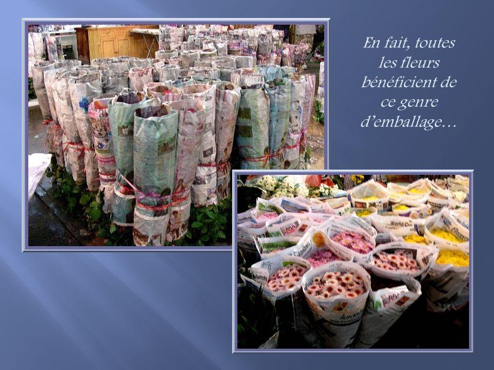 Pour la vente en gros, les roses sont emballées dans du papier journal qui est tenu humide.