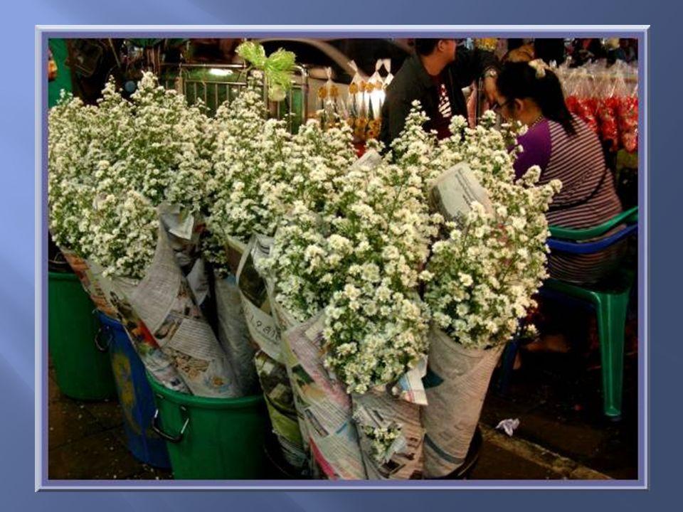 Toujours des roses! Les plus grosses et précieuses sont emballées individuellement.