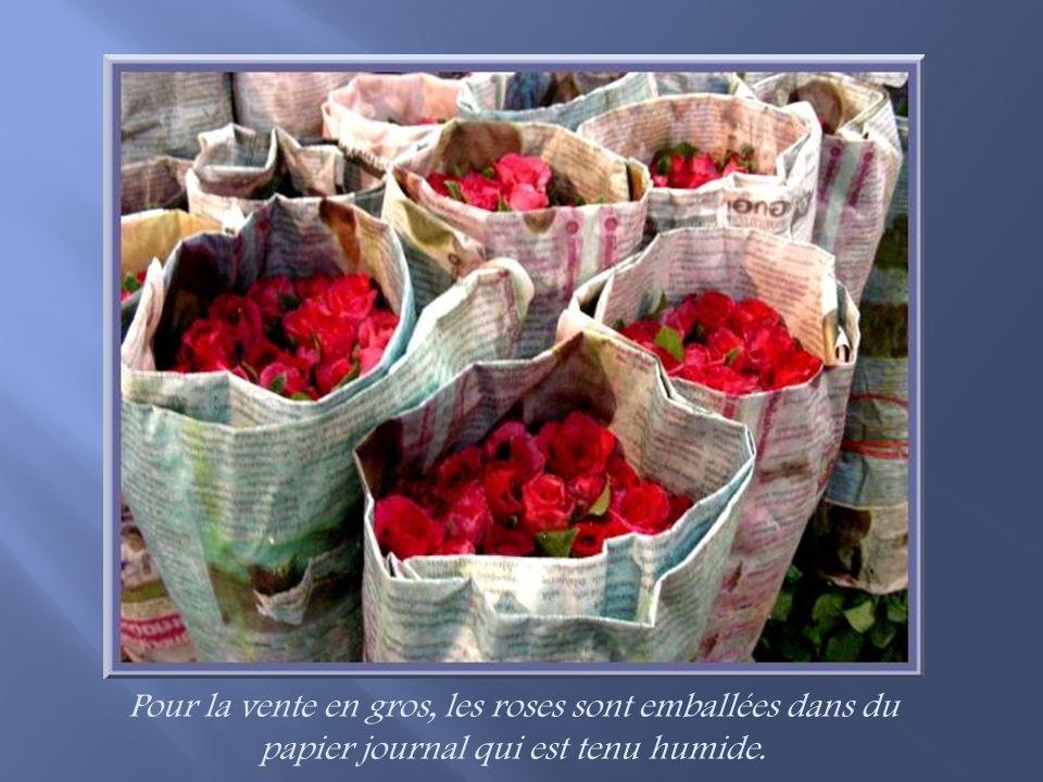 Quelques arrangements de fleurs variées…