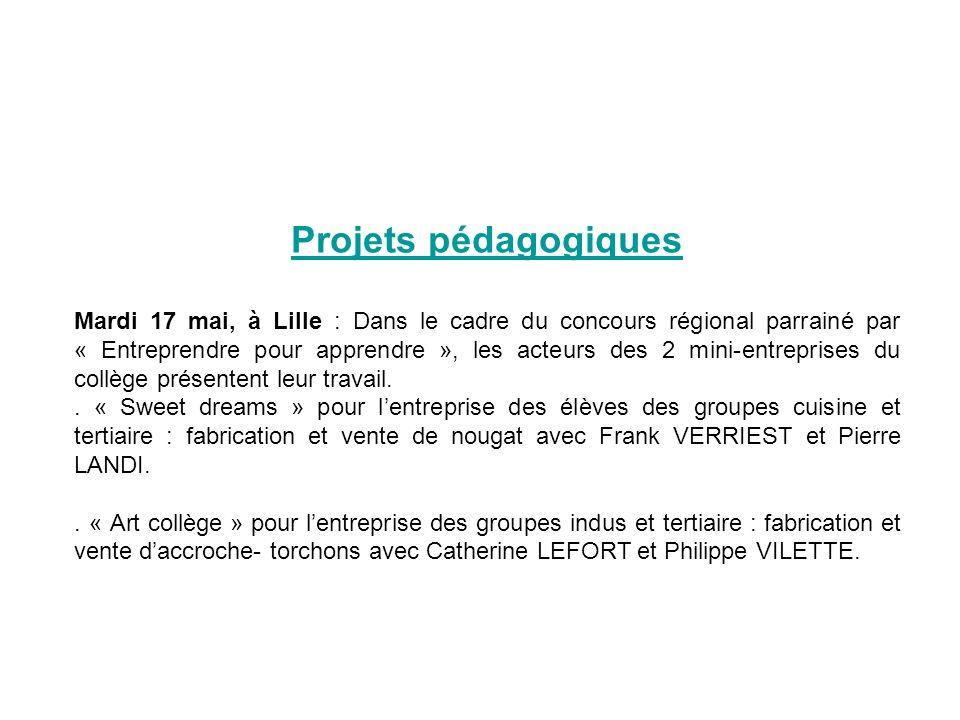 Projets pédagogiques Mardi 17 mai, à Lille : Dans le cadre du concours régional parrainé par « Entreprendre pour apprendre », les acteurs des 2 mini-entreprises du collège présentent leur travail..