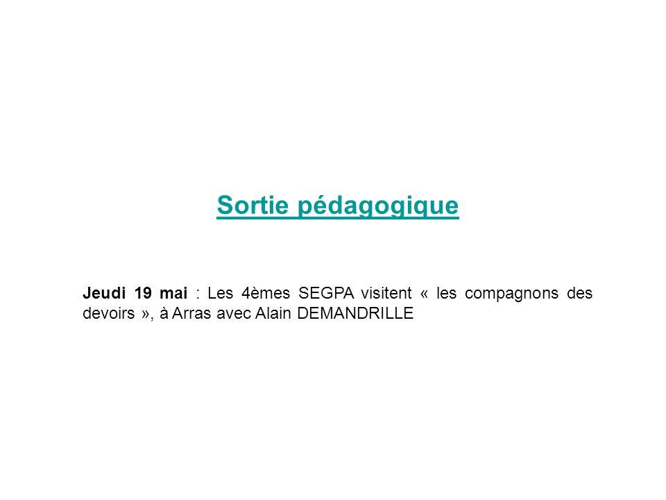 Sortie pédagogique Jeudi 19 mai : Les 4èmes SEGPA visitent « les compagnons des devoirs », à Arras avec Alain DEMANDRILLE