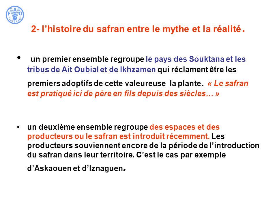 2- lhistoire du safran entre le mythe et la réalité. un premier ensemble regroupe le pays des Souktana et les tribus de Ait Oubial et de Ikhzamen qui