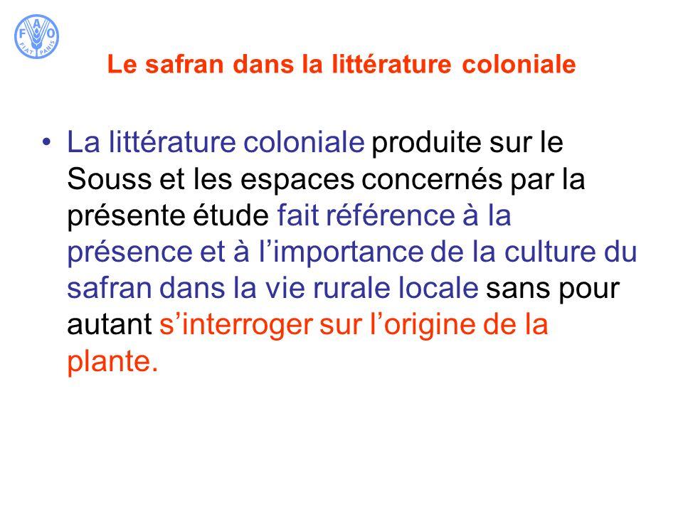 Le safran dans la littérature coloniale La littérature coloniale produite sur le Souss et les espaces concernés par la présente étude fait référence à