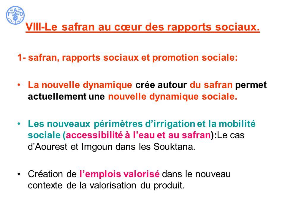 VIII-Le safran au cœur des rapports sociaux. 1- safran, rapports sociaux et promotion sociale: La nouvelle dynamique crée autour du safran permet actu