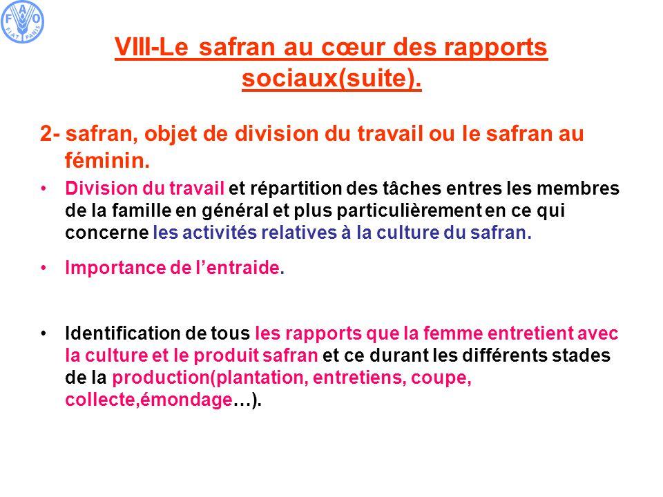 VIII-Le safran au cœur des rapports sociaux(suite). 2- safran, objet de division du travail ou le safran au féminin. Division du travail et répartitio
