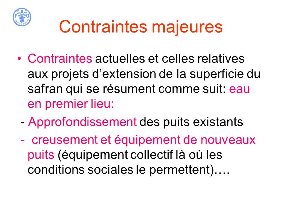Contraintes majeures Contraintes actuelles et celles relatives aux projets dextension de la superficie du safran qui se résument comme suit: eau en pr